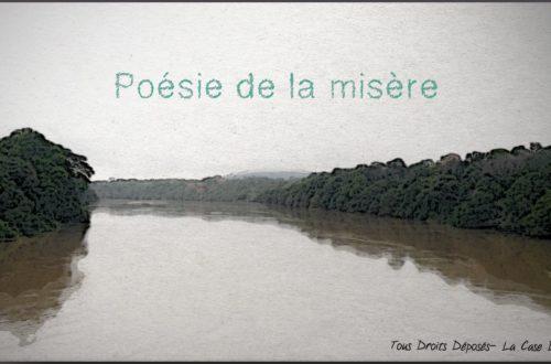 Article : La poésie de la misère