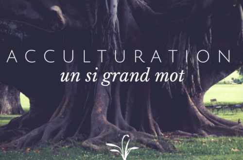 Article : Acculturation, ou culture délaissée