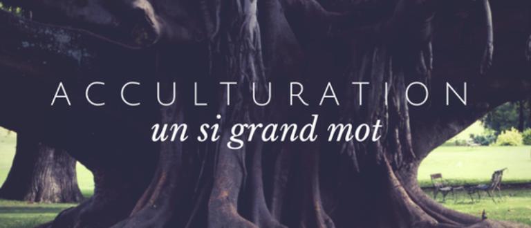 Article : Acculturation, ou culture délaissée